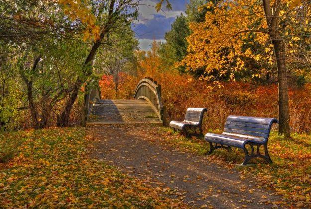 jesen_123rf_23092015.jpg