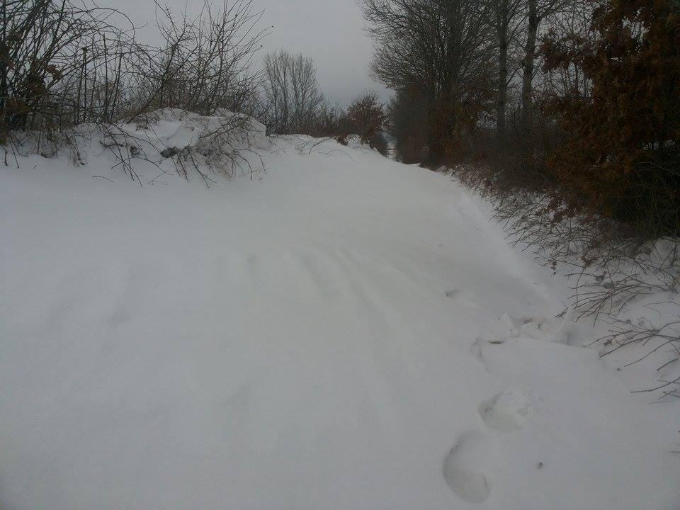 snijeg.jpg